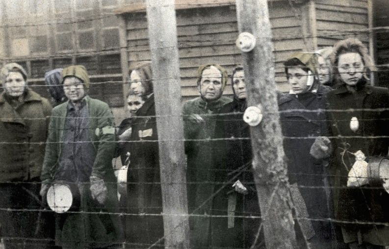 A perseguição de mulheres lésbicas, bis e homens trans no Holocausto