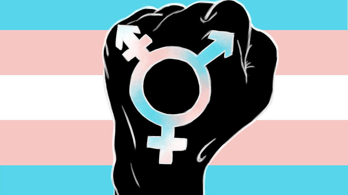Tasmânia aprova lei histórica de proteção às pessoas trans