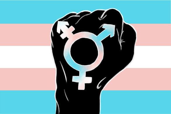 Tasmânia aprova lei história de proteção à população trans