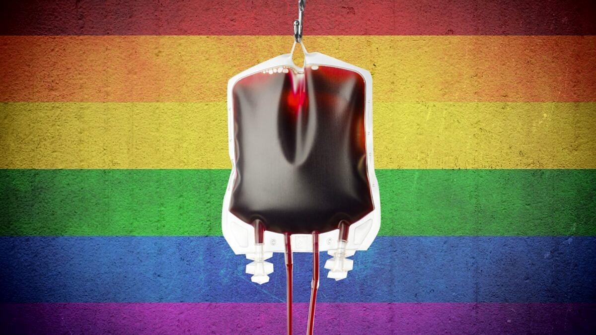 Anvisa lança novo guia para doação de sangue no Brasil; veja o que muda (Foto: Reprodução)