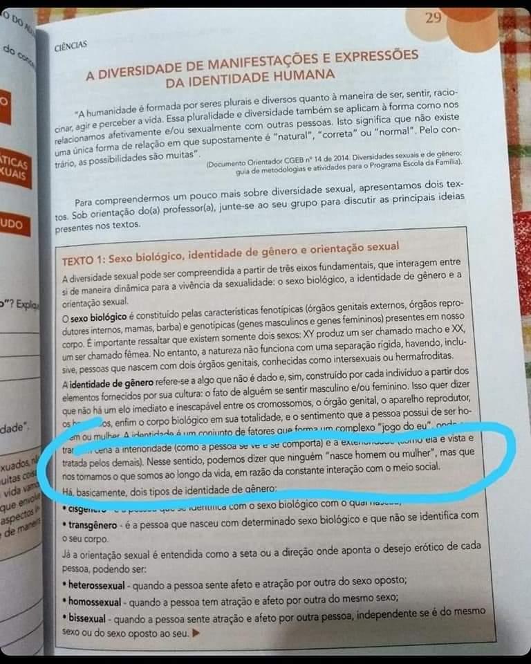 Outra seção do livro de ciência definia conceitos relativos à orientação sexual e identidade de gênero (Foto: Reprodução)